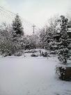 雪コピスガーデン1.jpg