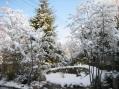 コピスガーデン冬