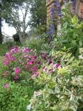 花壇2.jpg