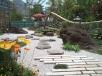 和風庭園に植えられたポピーの花と蹲、手前の景石何に見えますか?